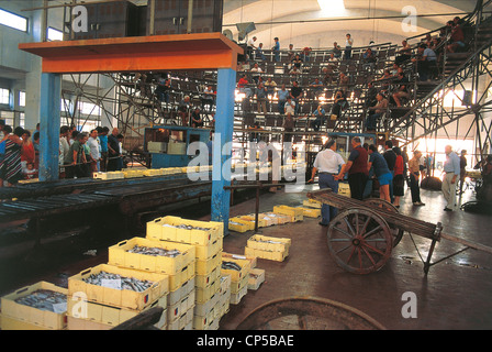 San Benedetto Del Tronto Marche Fish Market - Stock Photo