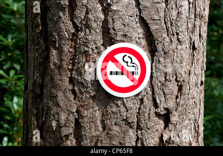 no smoking sign stuck on tree trunk in forest - Stock Photo