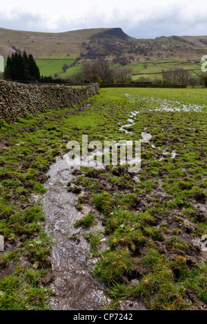 A stream of water flows through waterlogged farmland after days of rain, Nether Booth, Derbyshire, England, UK - Stock Photo