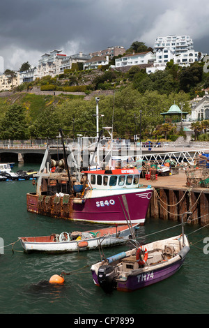 UK, England, Devon, Torquay, Harbour fishing boats moored at Beacon Quay - Stock Photo