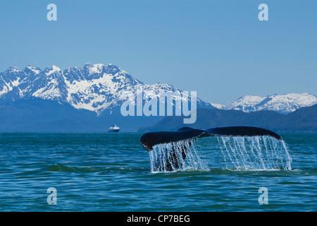 Alaska Marine Highway Ferry M V Kennicott In Home Port Of