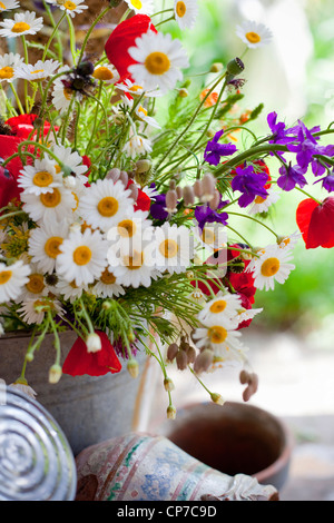 Container with mixed flower bouquet including Daisies, Argyranthemum frutescens, and red Field poppies, Papaver - Stock Photo