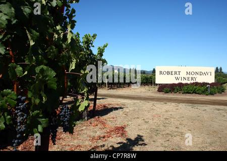 Mondavi Tours Winery