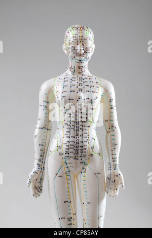 A female model with marked acupuncture points, Chinese characters on the meridians, traditional Chinese medicine; - Stock Photo