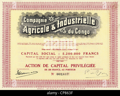 Historic colonial share certificate, agriculture and industry, 1935, Brussels, 250 Belgian francs, Belgium, Europe, - Stock Photo