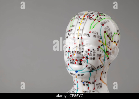 A female model with marked acupuncture points, Chinese characters on the meridians, traditional Chinese medicine - Stock Photo