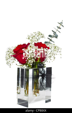 Red roses in glass box shaped vase on pure white background - Stock Photo