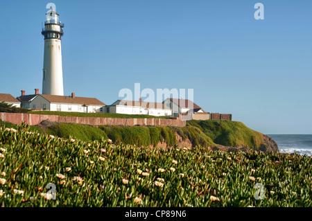 Pigeon Point Lighthouse California, USA. - Stock Photo