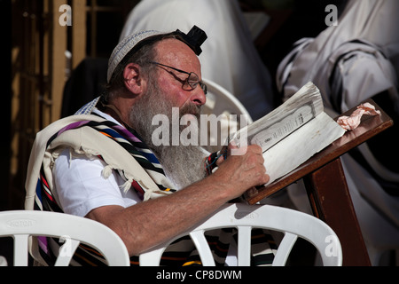 Jewish old man reading torah with tefillin & praying shawl at Wailing Wall, Jerusalem. Israel - Stock Photo
