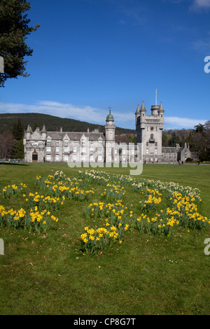 Balmoral Scottish castle and grounds in Spring with daffodils;  Royal summer holidy residences in Crathie, Deeside - Stock Photo