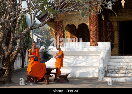 Buddhist novice monks having a chat in the shade of a tree (Luang Prabang-Laos). Moines novices Bouddhistes bavardant - Stock Photo