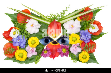 Mask and eyes of wild flower spring concept collage. Isolated on white with eyes patch - Stock Photo