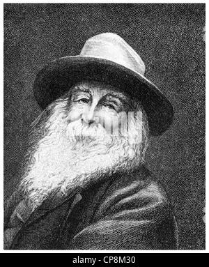 Walt or Walter Whitman, 1819 - 1892, an American poet, Historische Zeichnung aus dem 19. Jahrhundert, Portrait von Walt oder Wal Stock Photo