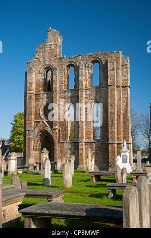 Elgin Cathedral, Moray, Grampian Region. Scotland.  SCO 8217 - Stock Photo