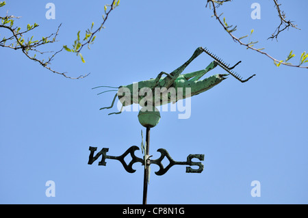Grasshopper weather vane at the Hagley museum - Stock Photo