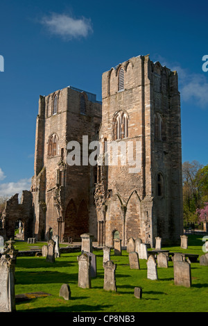 Elgin Cathedral, Moray, Grampian Region. Scotland.  SCO 8222 - Stock Photo