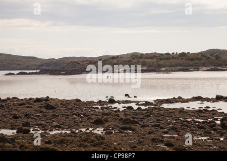 Solway firth,southern Scotland,near the village of Rockliff. - Stock Photo