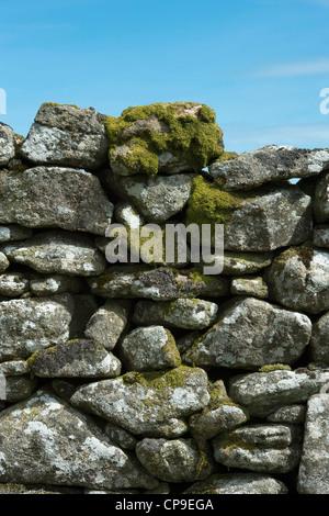 Dry stone wall, Dartmoor National Park, Devon, England - Stock Photo