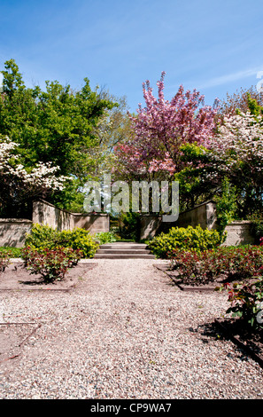 Beautiful flowers are seen on the trees that are blooming in the formal spring garden. Rose bush's are in the foreground. - Stock Photo