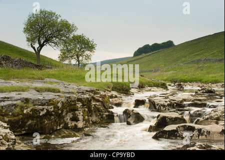 River Wharfe, flowing through quiet scenic narrow v-shaped valley, cascading over limestone rocks - Langstrothdale, - Stock Photo
