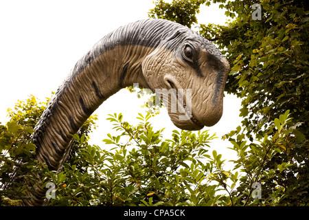 Apatosaurus in dinosaur park, Dan yr Ogof, Wales, UK - Stock Photo