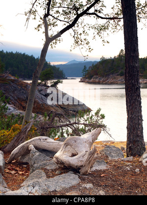 The Curme Islands in Desolation Sound, British Columbia - Stock Photo