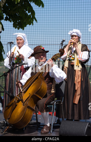 Playing the two-string bass, or 'bais'. Padna, Slovenia, folk music concert during wine and olive oil festival. - Stock Photo