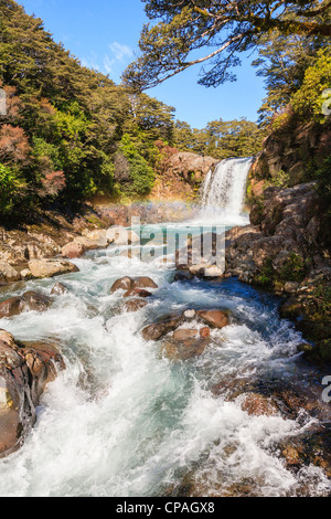 Tawhai Falls, on the Whakapapanui River, in the Tongariro National Park, New Zealand. - Stock Photo