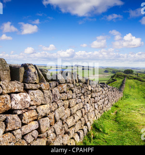 Dry stone wall running the same course as Hadrian's Wall in Northumberland. - Stock Photo