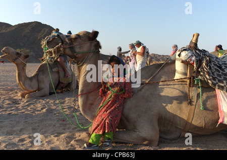 Bedouin girl guide in traditional clothing leads tourists riding camels in desert. Bedouin village about Hurghada, - Stock Photo
