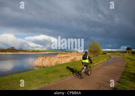 A cyclist on the National Cycle Route running along Jubilee River in Dorney, Buckinghamshire, UK - Stock Photo