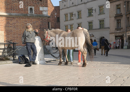 Man with a pony collecting money from tourists outside St. Mary's Basilica in Krakow, Poland. - Stock Photo