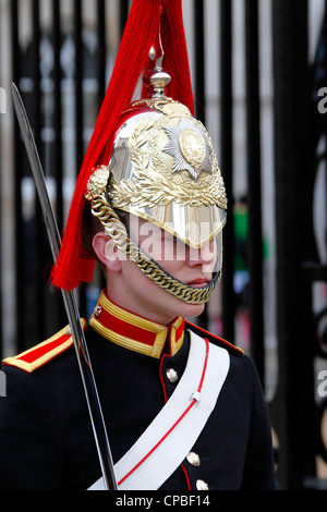 blues royals horse guards - Stock Photo