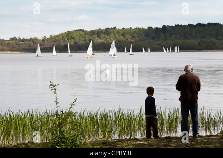 grandfather and grandson feeding ducks at Frensham Pond with sail boats on lake - Stock Photo