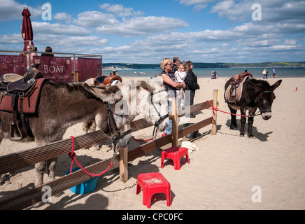 Donkey rides on Weymouth Beach, Dorset, England, UK - Stock Photo