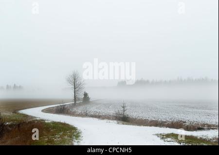 Snowy road in rural landscape - Stock Photo