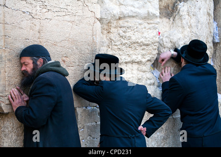 Men praying at the Wailing Wall, Jewish Quarter of the Western Wall Plaza, Old City, Jerusalem, Israel, Middle East - Stock Photo