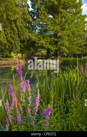 The Jardins des Prebendes d'Oe, Tours, Indre et Loire, Centre, France, Europe - Stock Photo