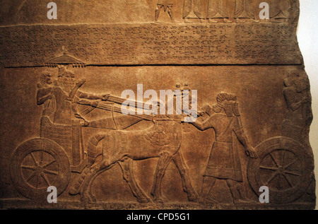 Alabaster panel depicting King Tiglath-Pileser III in his chariot. From the Palace of Nimrud. - Stock Photo