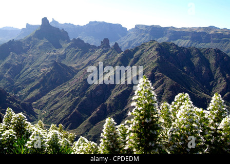 View to Roque Nublo near Tejeda, Gran Canaria, Canary Islands, Spain, Europe - Stock Photo