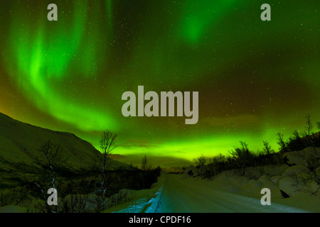 Aurora borealis (Northern Lights) seen over a snow covered road, Troms, North Norway, Scandinavia, Europe - Stock Photo