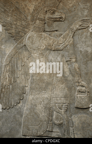 Relief depicting a Eagle-headed protective spirit. 865-860 BC. From Northwest Palace. Nimrud. - Stock Photo