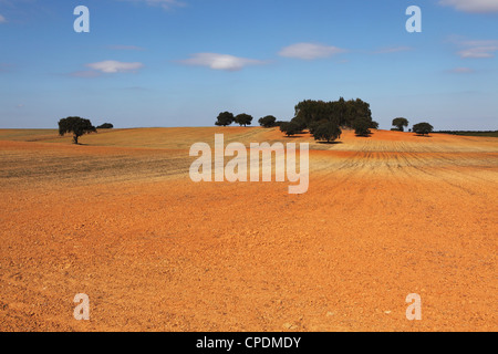 A field of orange-red earth, typical of rural land of the region, close to Mertola in the Alentejo, Portugal, Europe - Stock Photo