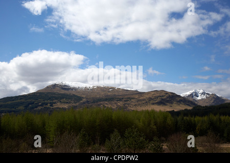 conifer forest beneath grampian mountains in the highlands Scotland UK - Stock Photo