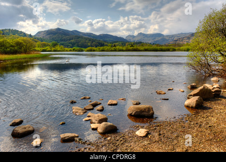 Elterwater is a small lake that lies half a mile (800 m) south-east of the village of the same name Valley of  Great - Stock Photo
