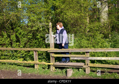 A rambler negotiates a footpath stile on her walk along the 'River Bure' in the 'Bure Valley' 'East Anglia''Great - Stock Photo