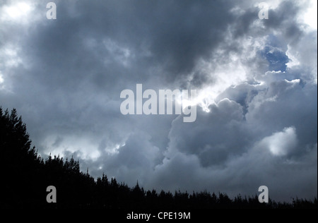 Heavy dark clouds formation and thunderstorm approaching above forest on stormy winter day. - Stock Photo