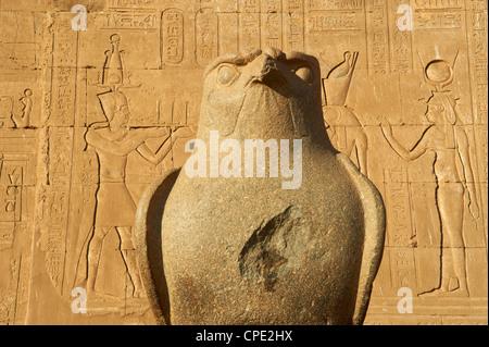 Statue of falcon, Temple of Horus, Edfu, Egypt, North Africa, Africa Stock Photo