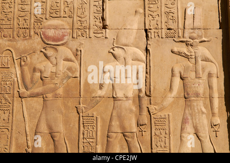 Bas relief, Temple of Sobek and Haroeris, Kom Ombo, Egypt, North Africa, Africa - Stock Photo
