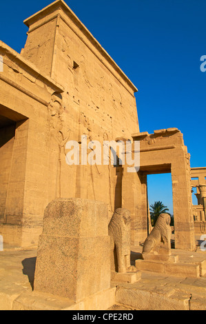 Temple of Philae, UNESCO World Heritage Site, Agilkia Island, Nile Valley, Nubia, Egypt, North Africa, Africa - Stock Photo